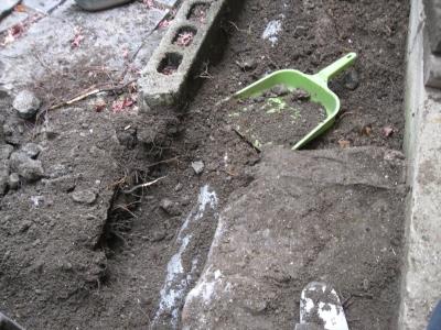 排水口 配管 配水 根っこ 原因 土砂 汚泥 管 詰まり 閉塞 雨水桝 コンクリート 仙吉 すくいスコップ イカ型片手鍬